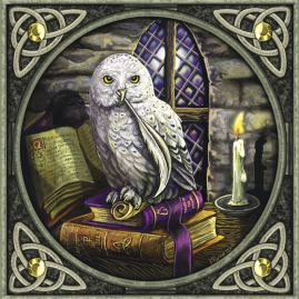 magical-snowy-owl-greeting-card-2095-p